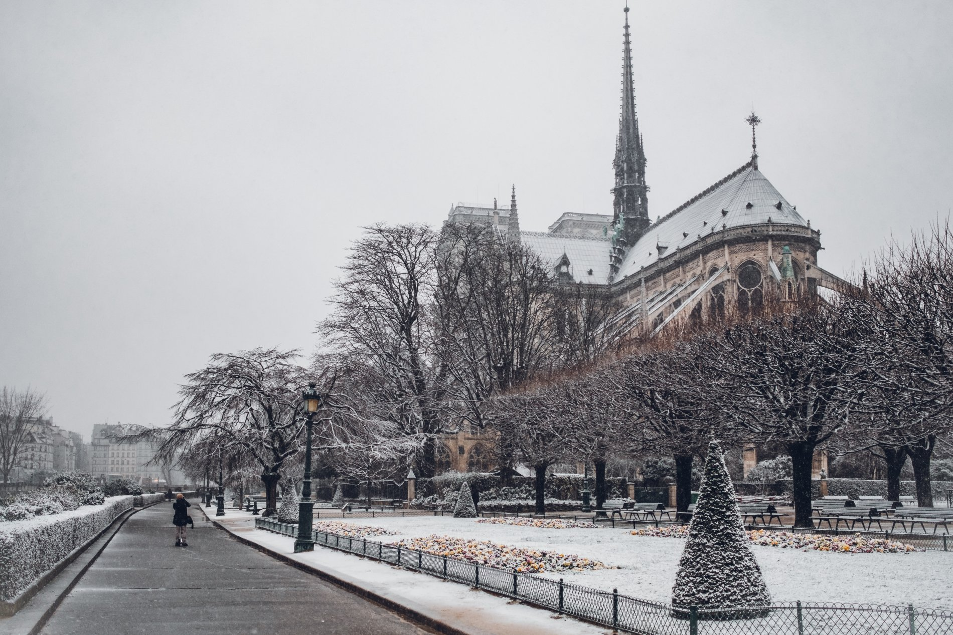 Restoring Notre Dame