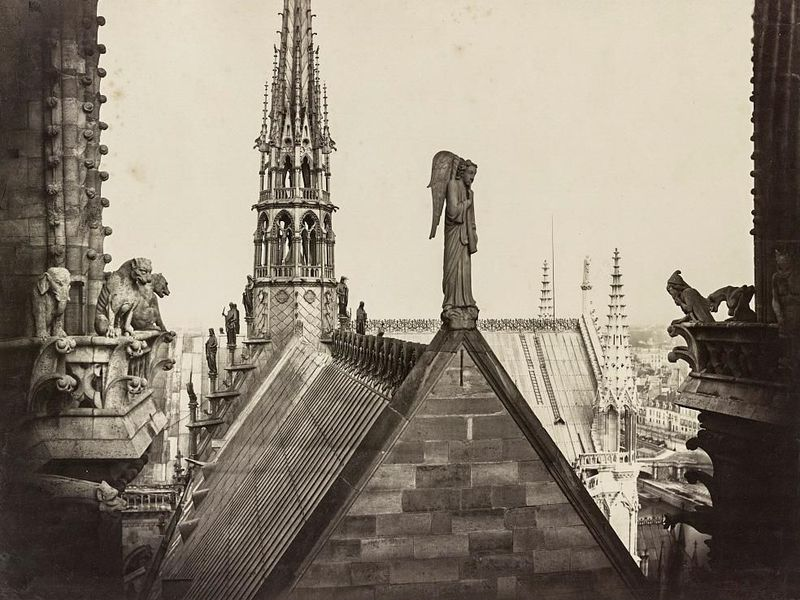 The roof of Notre Dame