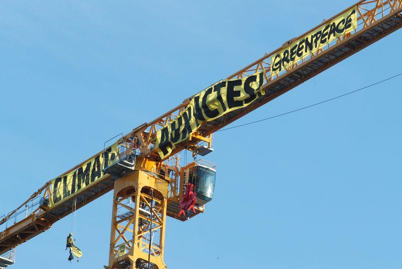 Notre Dame crane